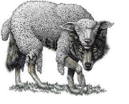 wold-sheep-clothing2